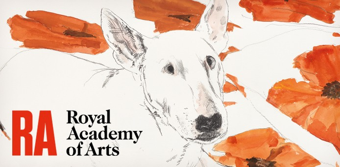 Royal Academy Postcard Wallets