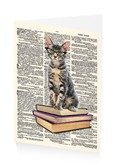 Early Reader Kitten